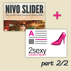 Combine 2SexyContent with Nivo Slider to improve your Image Slider on DotNetNuke - Part 2/2